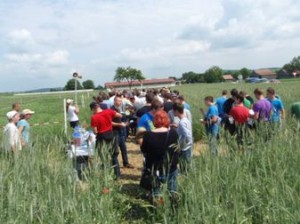 csm_2011-06-01Aspersdorf-Feldtag_026_89bb5235fd