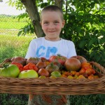 Tomaten aus dem Garten der Vielfalt © Bio Forschung Austria