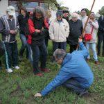 Unkraut - Feind oder auch Freund im Garten © Bio Forschung Austria