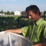 Dr. Manfred Pendl (MA 22) entlässt die Schmetterlinge nach der Veranstaltung wieder in die Freiheit © Bio Forschung Austria