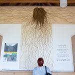 Spargelwurzel im Besucherzentrum © Matthias Nemmert