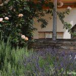 Eingang der BFA mit Insektenhotels, Rosmarin, Lavendel, Rosen und Salbei (c) KatharinaSandler